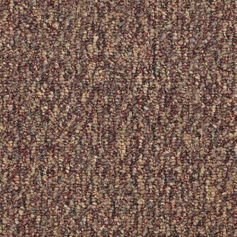 Sequence - Front To Back From Shaw Carpet
