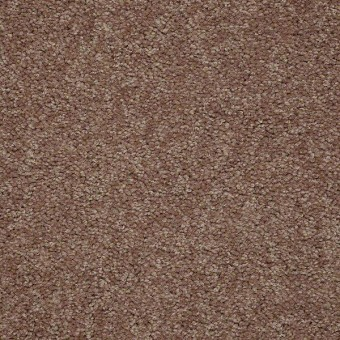 Knockout II - Antique Leather From Shaw Carpet