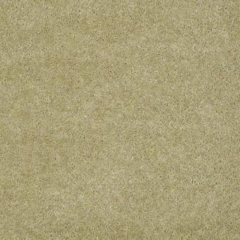Bandit II - Aloe From Shaw Carpet