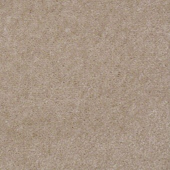 Bandit II - Antique Taupe From Shaw Carpet
