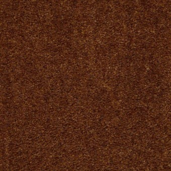 Zipp - Adobe From Shaw Carpet