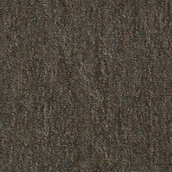 Mack - Antique Moss From Shaw Carpet