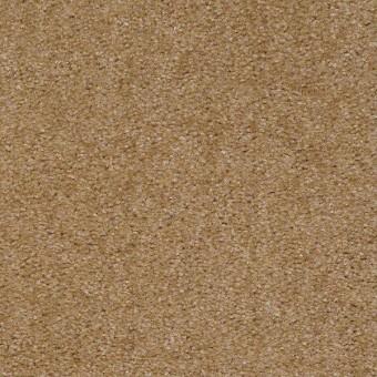 Zipp Plus - Acorn From Shaw Carpet