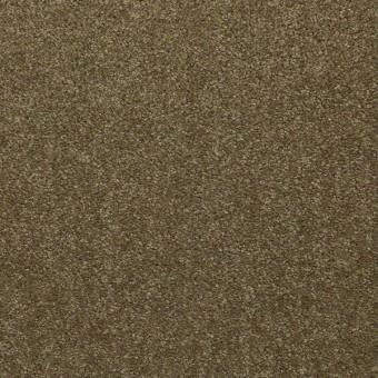 Fleetwood - Autumn Moss From Shaw Carpet