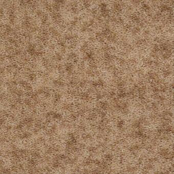 Dutchmen - Almond Spice From Shaw Carpet