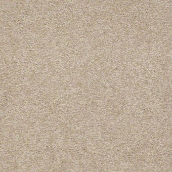 Sandy Hollow III - Adobe From Shaw Carpet