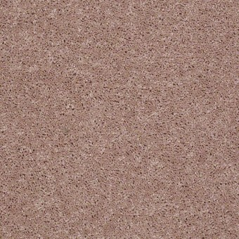 Point Guard - Honeycomb From Shaw Carpet