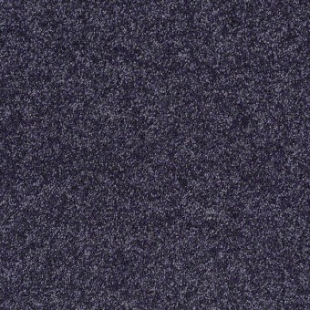 Point Guard - Denim From Shaw Carpet