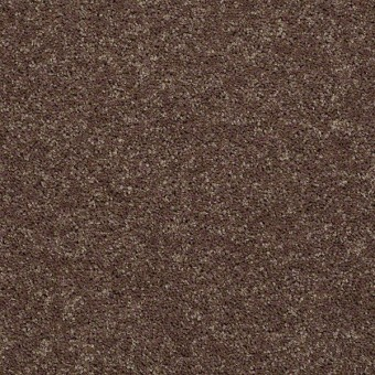 Point Guard - Cattail From Shaw Carpet