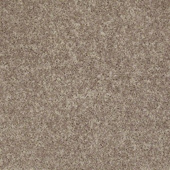 Point Guard - River Slate From Shaw Carpet