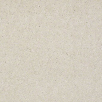 Newport - Antique Pearl From Shaw Carpet