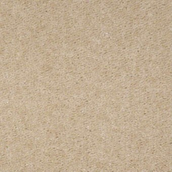 QS112 - Almond From Shaw Carpet