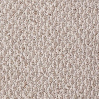 QS115 - Sand Dune From Shaw Carpet