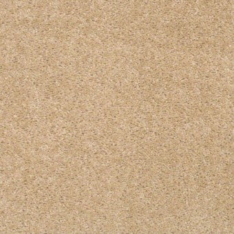 QS140 - Skylight From Shaw Carpet