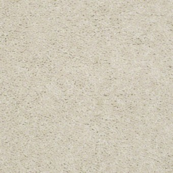QS206 15' - 102 From Shaw Carpet