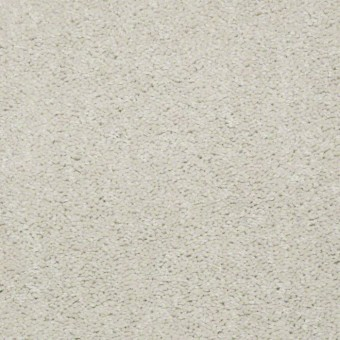 QS407 - 7100 From Shaw Carpet