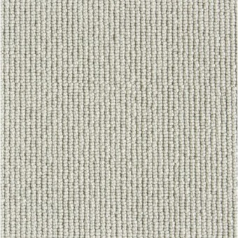 Rogue - Platinum From Stanton Carpet