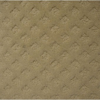 Coventry - Oyster From Shaheen Carpet