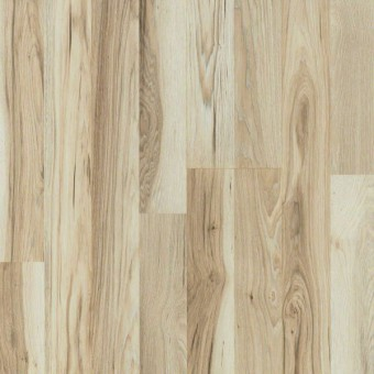 Zion Classic - Starlight Hickory From Showcase Collection