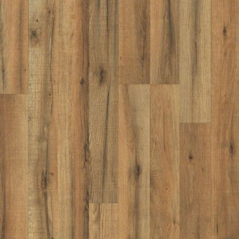 Zion Classic - Orchard Oak From Showcase Collection