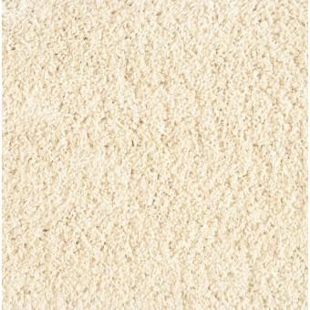 Shaggy Plush - Ivory From Stanton Carpet
