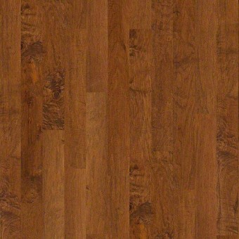 Coral Springs - Surfside From Shaw Hardwood