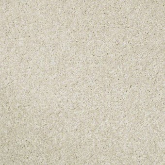 XV540 NET - Snow Cone From Shaw Carpet