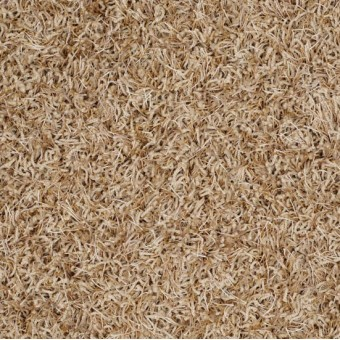 Bling Anderson Tuftex Carpet Save 30 50 At Carpet Express