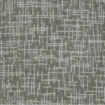 Applause From Tuftex Carpet Save 30 50