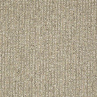 Chance Anderson Tuftex Carpet Save 30 50 At Carpet