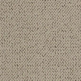 Inspiring Berber From Tuftex Carpet Discount Prices