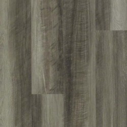 Oyster Oak
