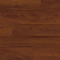Sierra Plank
