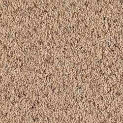 Dune Drift