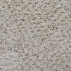 Residential - Trackless Carpet