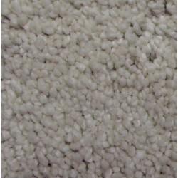 Residential - Trackless Carpet
