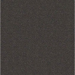 Charcoal (In-Stock Special)