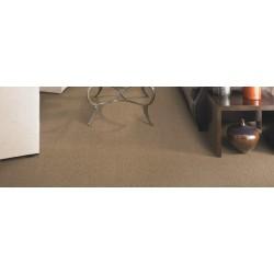 2F60-24_room.jpg
