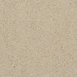 Soft Amp Silky Dixie Home Carpet Save 30 50 At Carpet