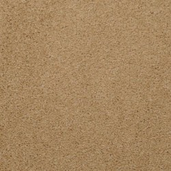 Soft Amp Silky Dixie Home Carpet Save 30 50
