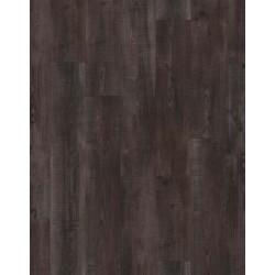 Bristol Oak