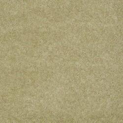 Pale Moss