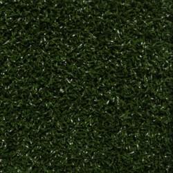 Residential - Grass Carpet