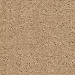 My Style Dixie Home Carpet Save 30 50 At Carpet