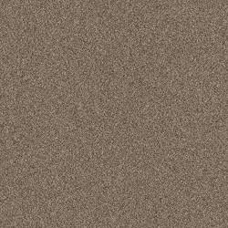 Contempo Tile