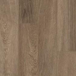 Trailhead Oak
