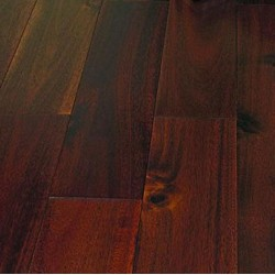 Pacific Walnut