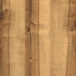 Rustic Spalted
