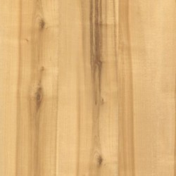 Natural Spalted