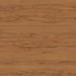 Endurance Plank- Rustic